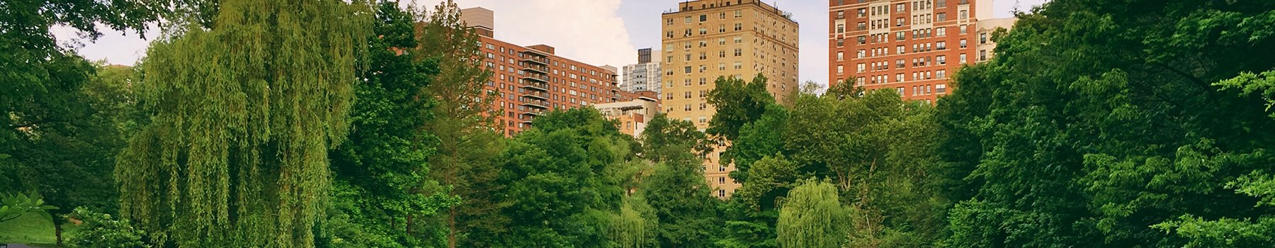 Plan Ahead and Save at New York