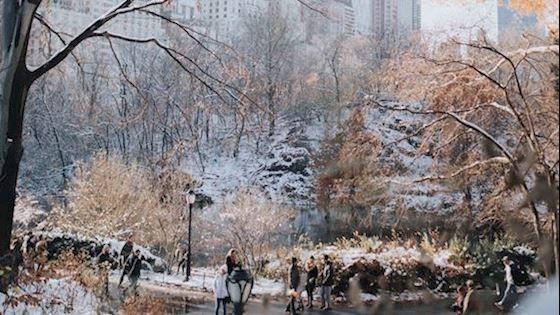 belleclaire-winter-sale