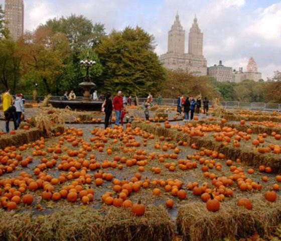 Weekend Jaunts - Fall (Family) Freebies: Upper West Side Harvest Week - 2016-10-02